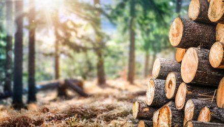 Timber Sector ETFs Could Enjoy a Seasonal Boost Ahead