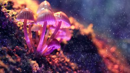 AdvisorShares launches Psychedelics ETF, PSIL
