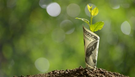 Growth Stock ETFs Maintain Their Momentum on Expectations of Economic Support