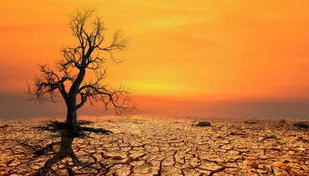 Majority of Americans Believe Global Warming Is Harming Them Right Now