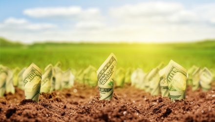 Active ETF Appeal Increases as Money Managers Grow AUM