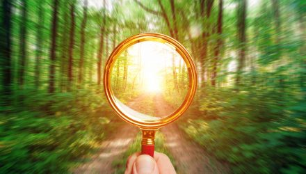 Get Climate Change and ESG Focus in Developed Markets With This ETF